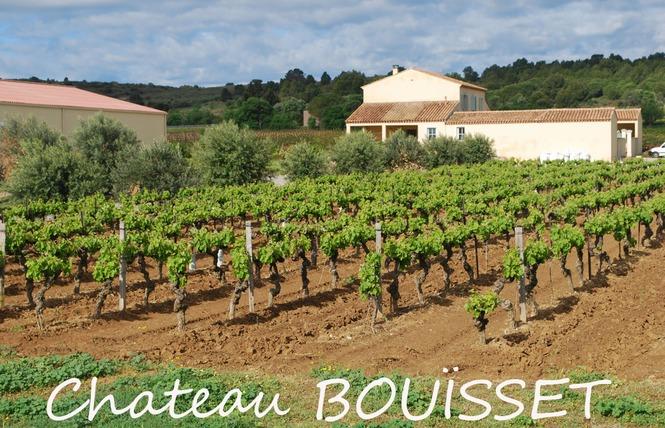 CHATEAU BOUISSET 1 - Fleury